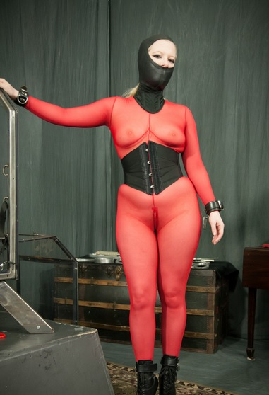 Bound, Boxed & Buzzed