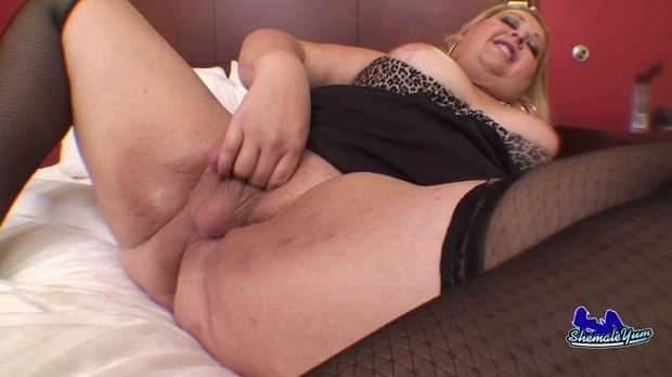 trances__shemale__transsexual_3472.00001.1,
