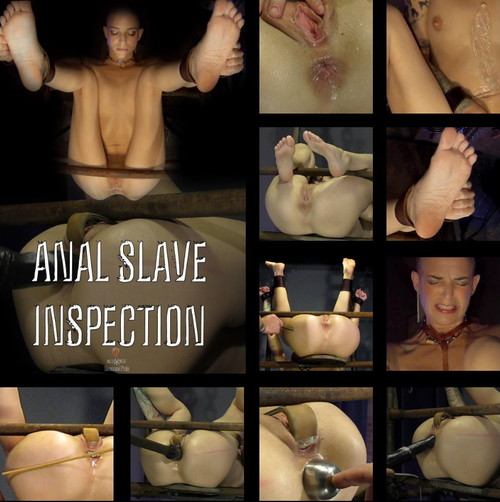 SENSUAL PAIN: Oct 18, 2017: Anal Slave Inspection | Abigail Dupree | Master James