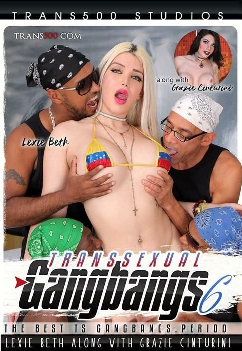Transsexual Gang Bangs 6 (2017)