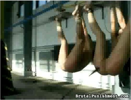 http://ist3-7.filesor.com/pimpandhost.com/9/6/8/3/96838/5/8/T/v/58TvX/BrutalPunishment-f03_cover_m.jpg