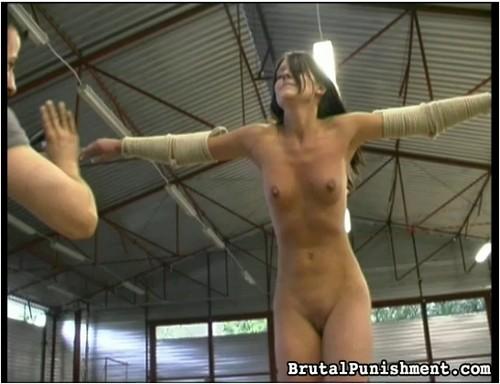 http://ist3-7.filesor.com/pimpandhost.com/9/6/8/3/96838/5/8/V/w/58Vw7/BrutalPunishment-f27_cover_m.jpg