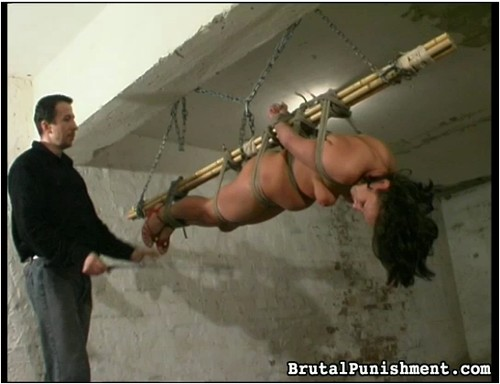 http://ist3-7.filesor.com/pimpandhost.com/9/6/8/3/96838/5/8/X/T/58XTj/BrutalPunishment-f54_cover_m.jpg