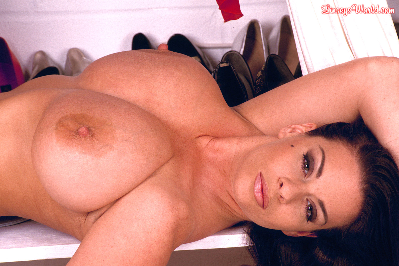 Linsey dawn mckenzie fan